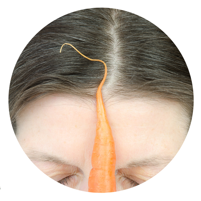 carrott with forehead